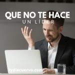 Lydia Cuervo_Líder_Principios del Liderzgo